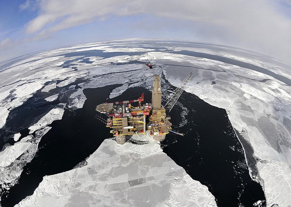 Shelf-Arktika