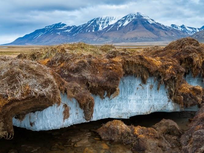 553-permafrost