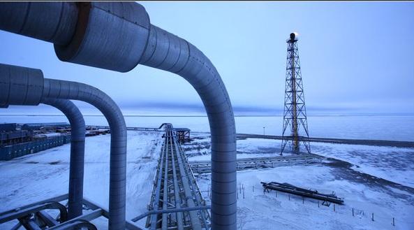 Arctic-neft-oil