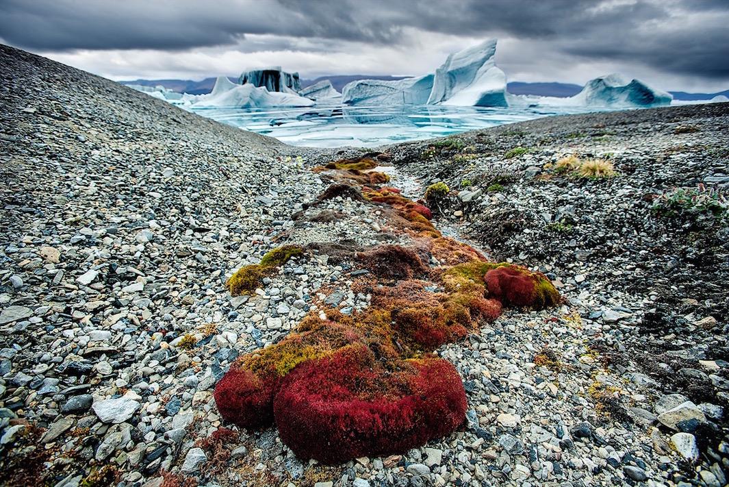 The-Arctic-the-vanishing-North-03