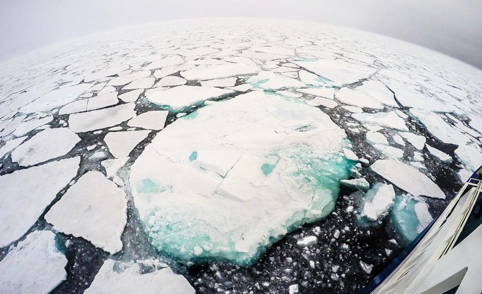 sea_ice