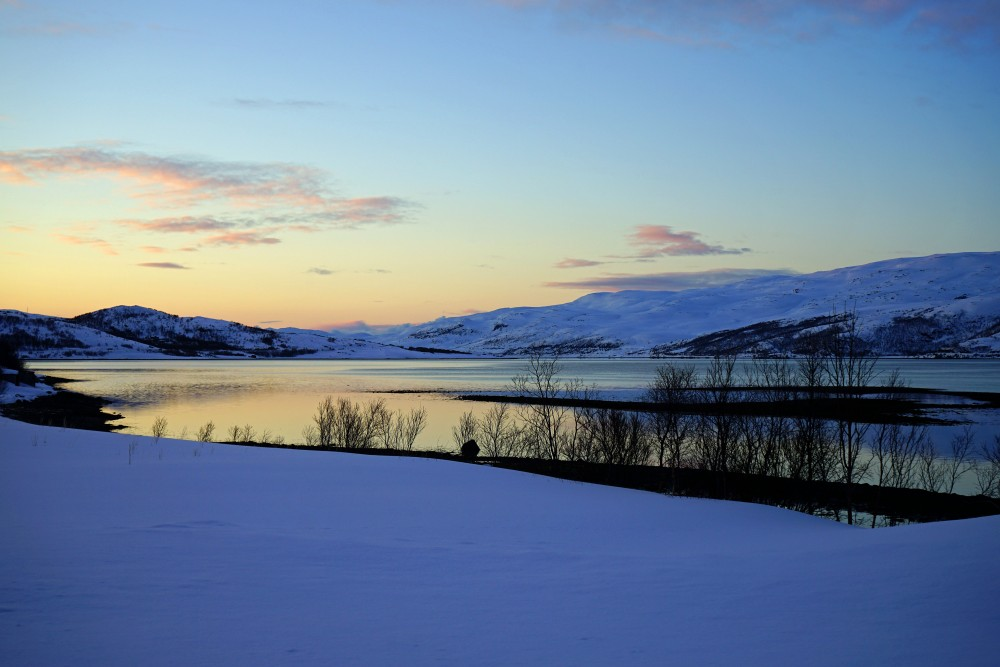 repparfjord-iia