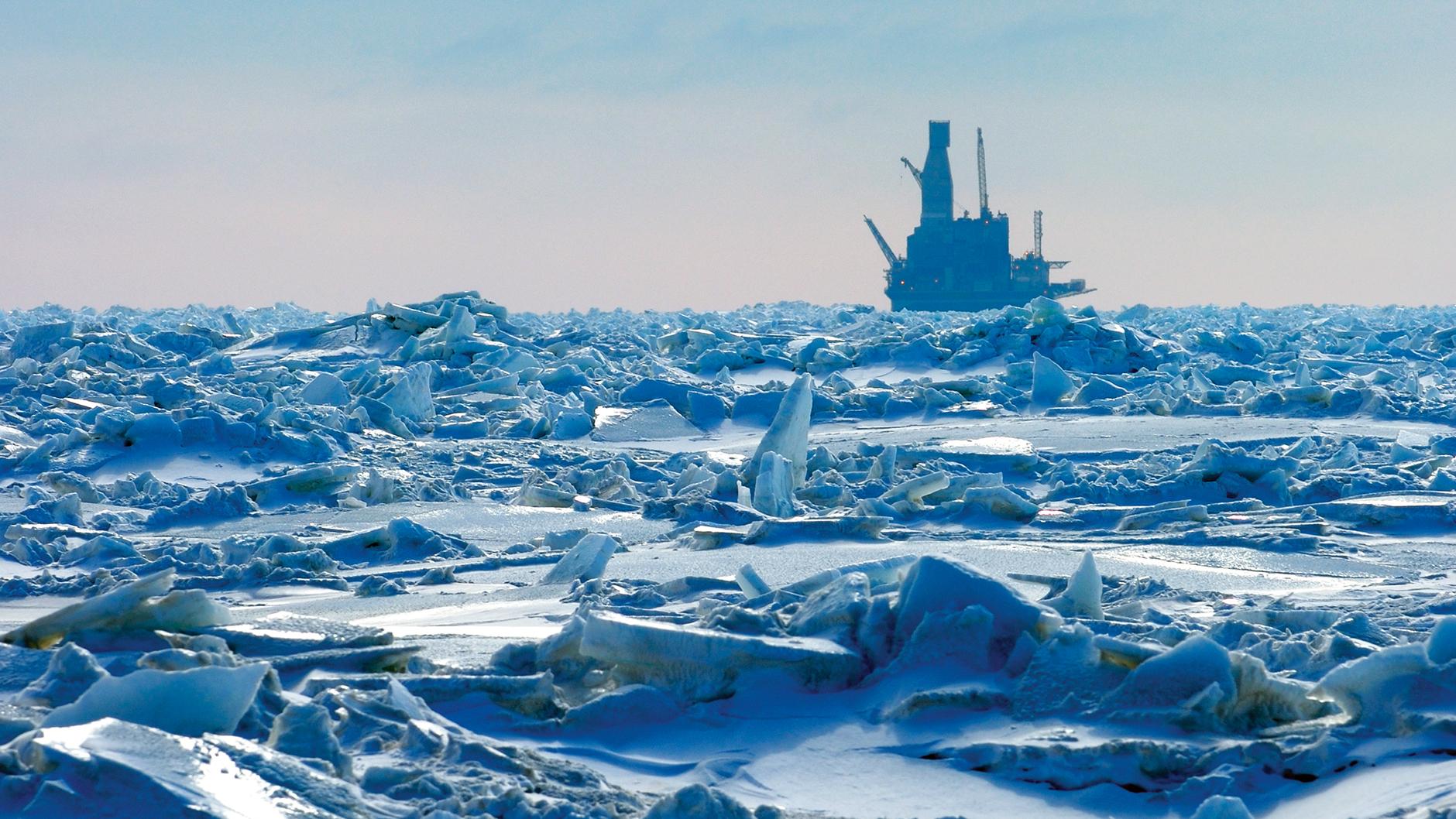 arctic_experience_sakhalin_inline image